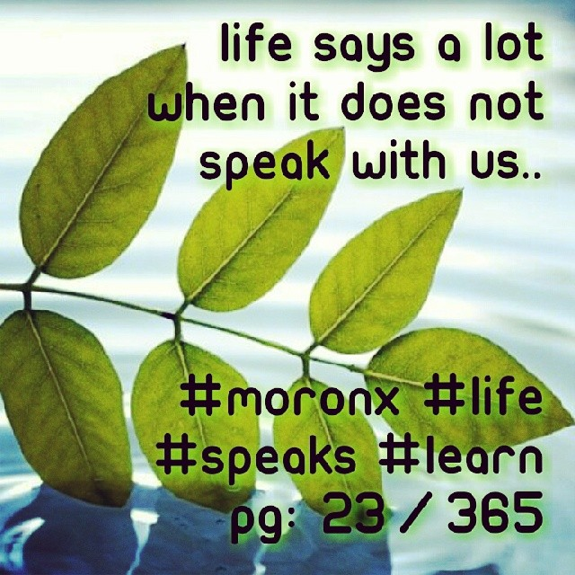 life says a lot when it does not speak with us.. #moronX  #life #speaks #learn pg: 23/365